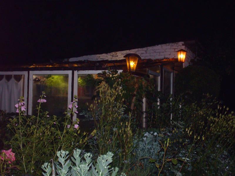 Beleuchtung Gewächshaus