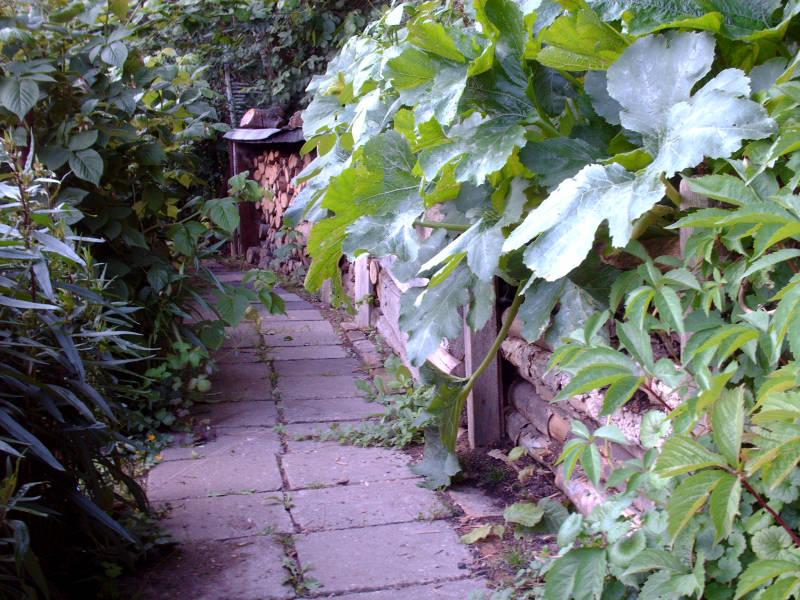 Gartenweg alte Gehwegplatten