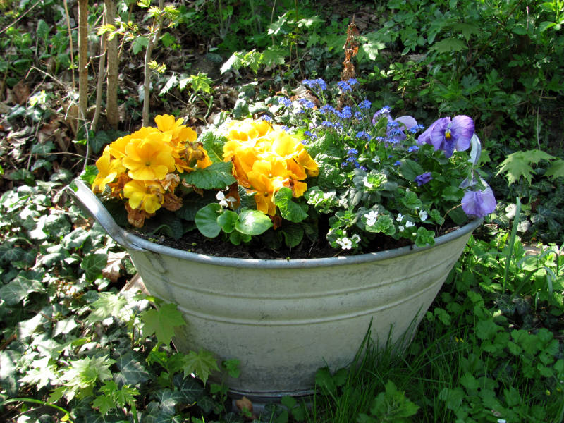 Blumen April