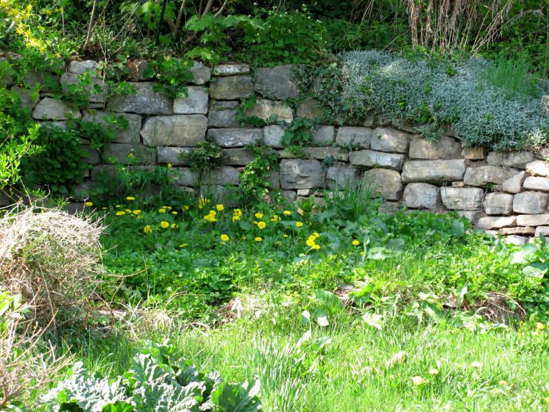 Große Trockenmauer