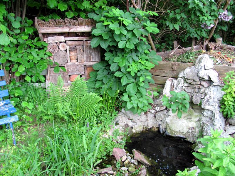 Kleinen Wasserfall bauen