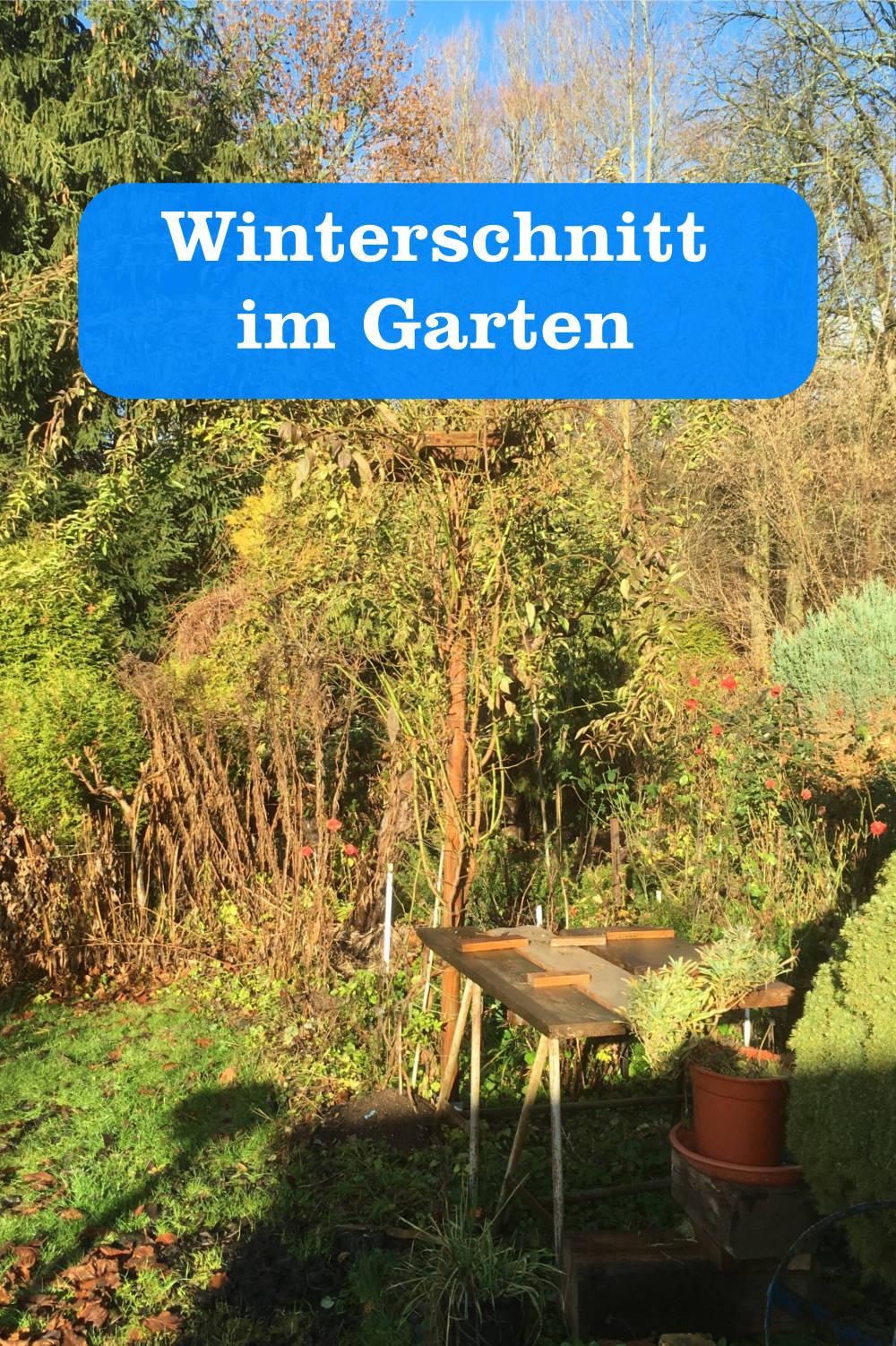 Winterschnitt im Garten
