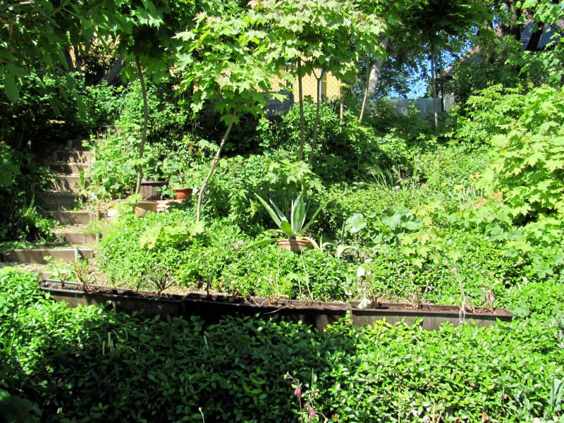 Garten Terrassen Beet