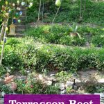 Terrassen Beet anlegen