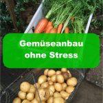 Gemüseanbau ohne Stress