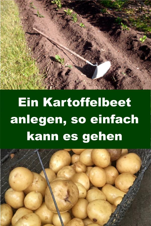 Kartoffelbeet anlegen