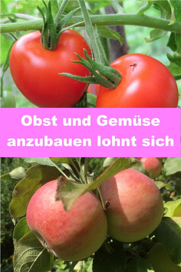 Obst und Gemüse anbauen