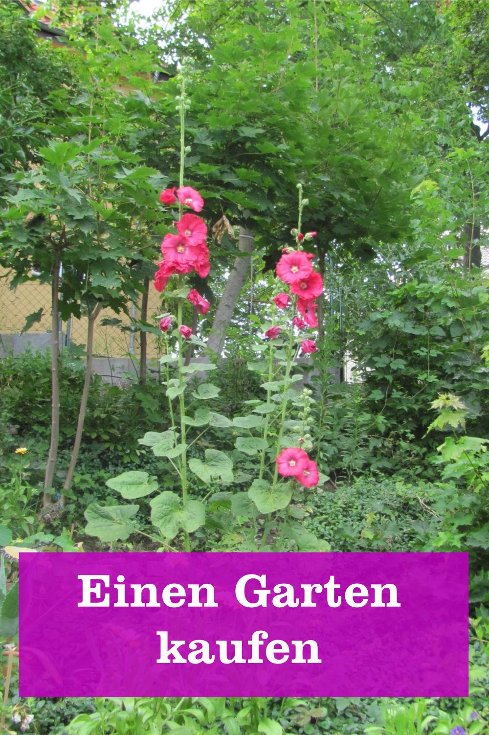 Garten kaufen