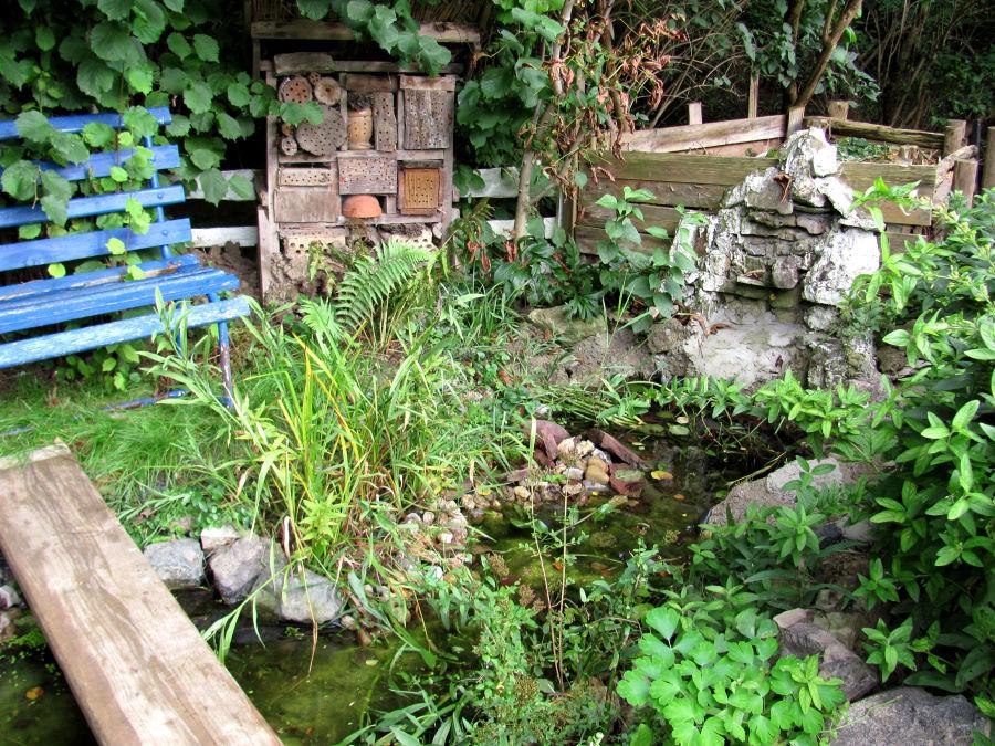 mein schöner garten » gartenratgeber, Garten und Bauen