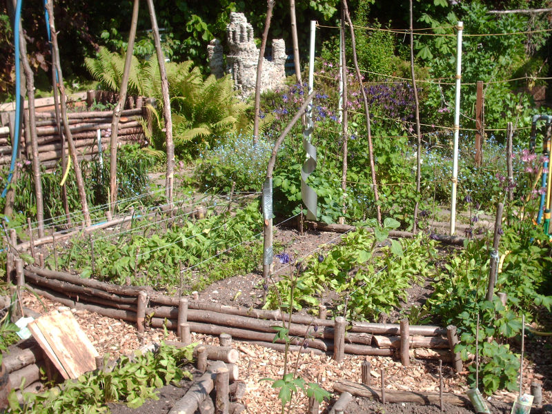 Saatgut Gemüsegarten planen
