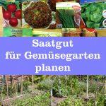 Saatgut für Gemüsegarten