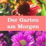 Garten am Morgen