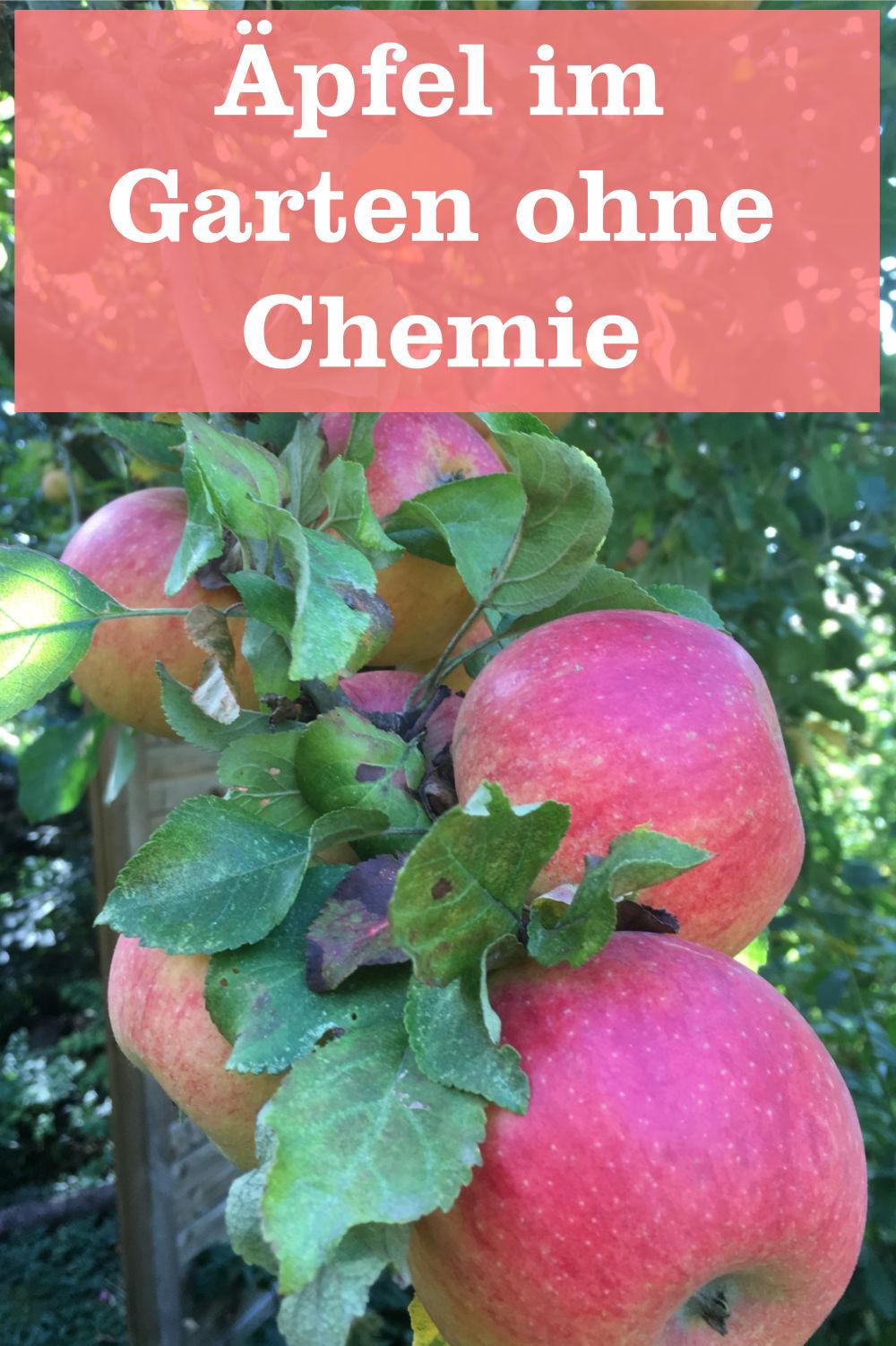 Äpfel ohne Chemie