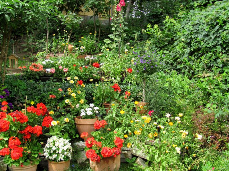 Blumentöpfe im Garten