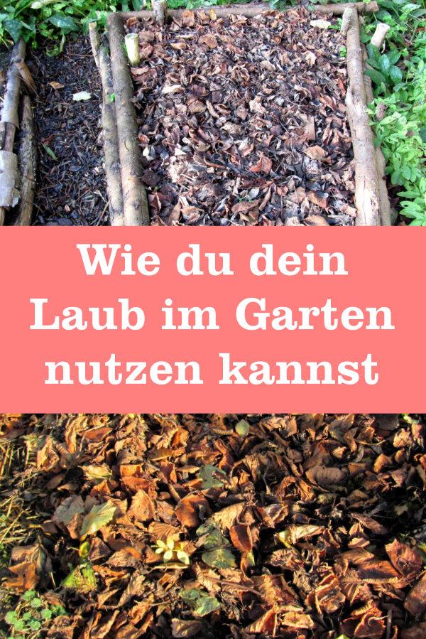 Laub im Garten