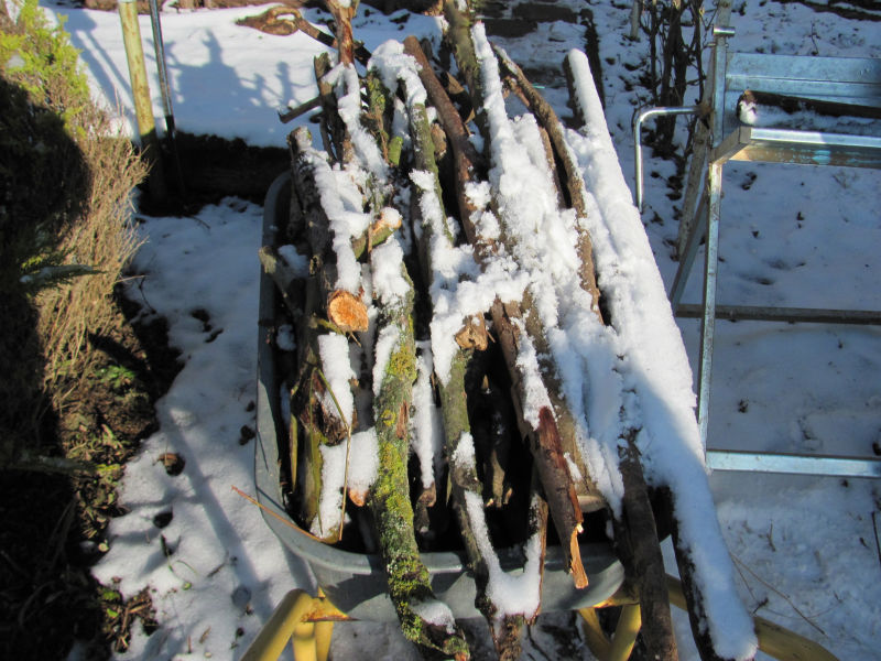 Holz in Schubkarre