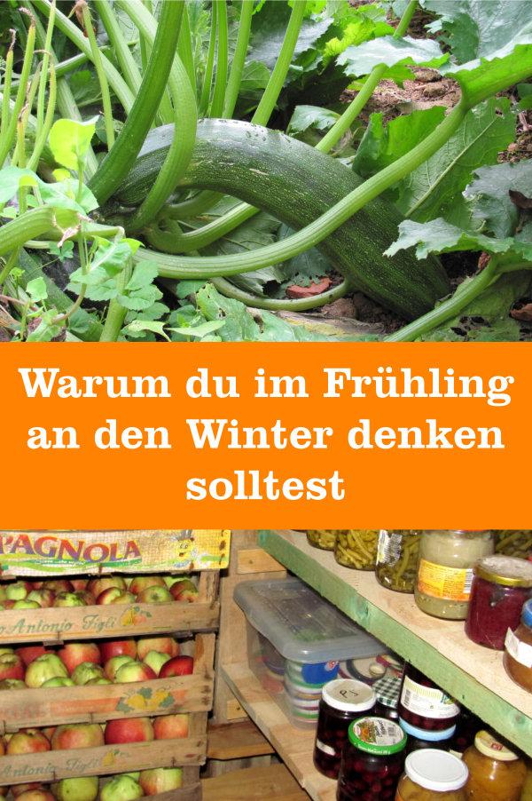 Gemüseanbau im Frühling