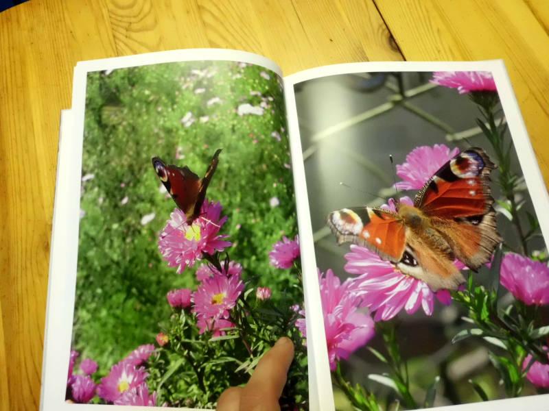 Fotobuch Qualität