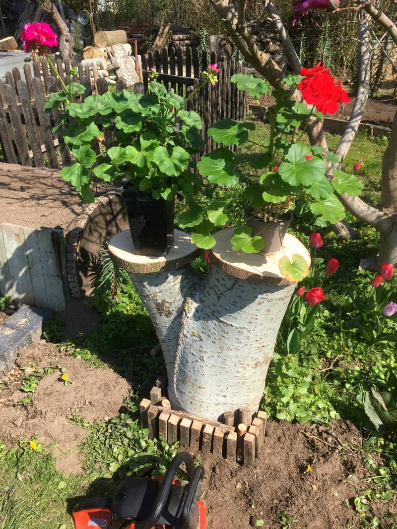Baumstamm Blumenständer