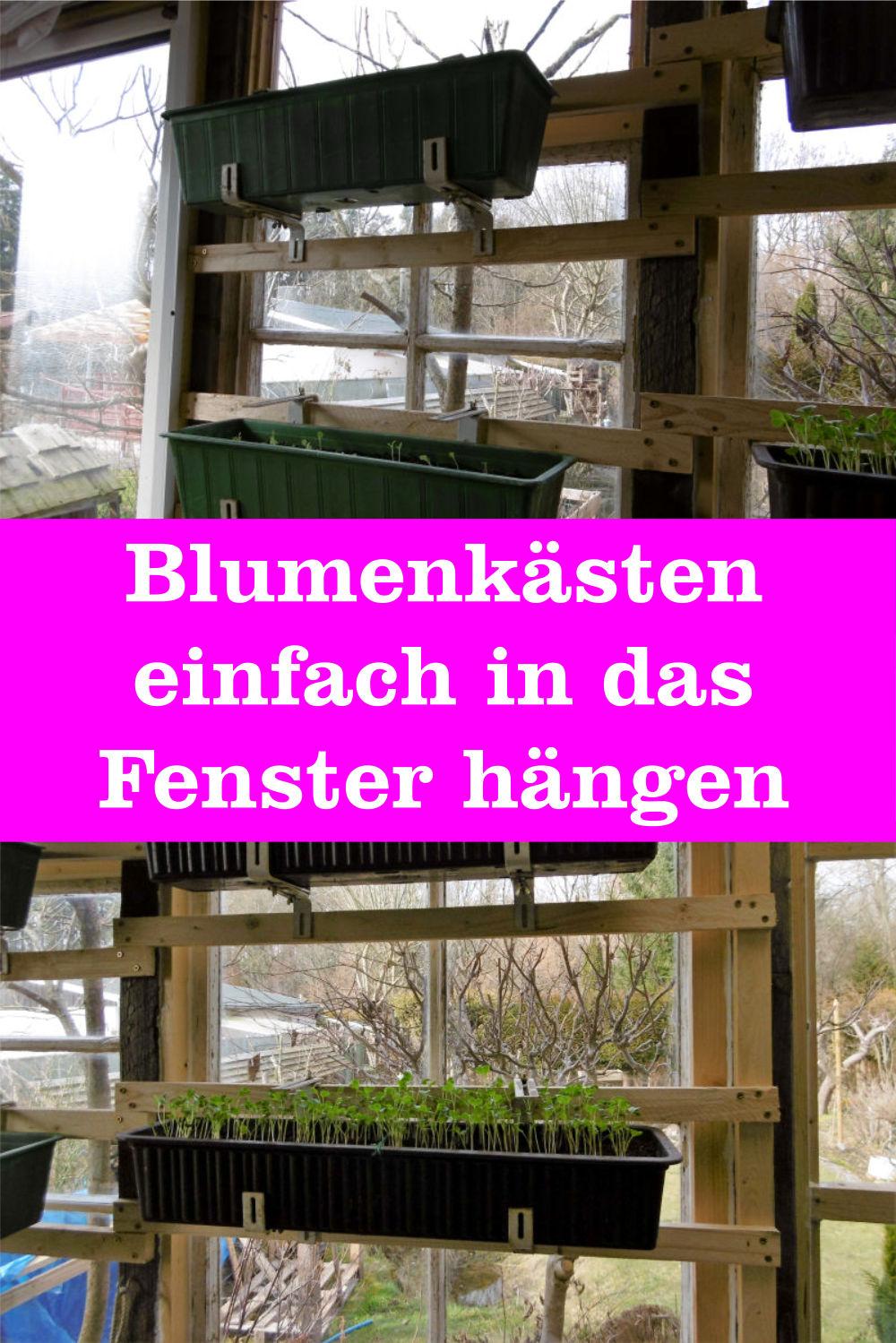 Blumenkasten Fenster
