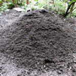 komposterde-im-garten-einsetzen