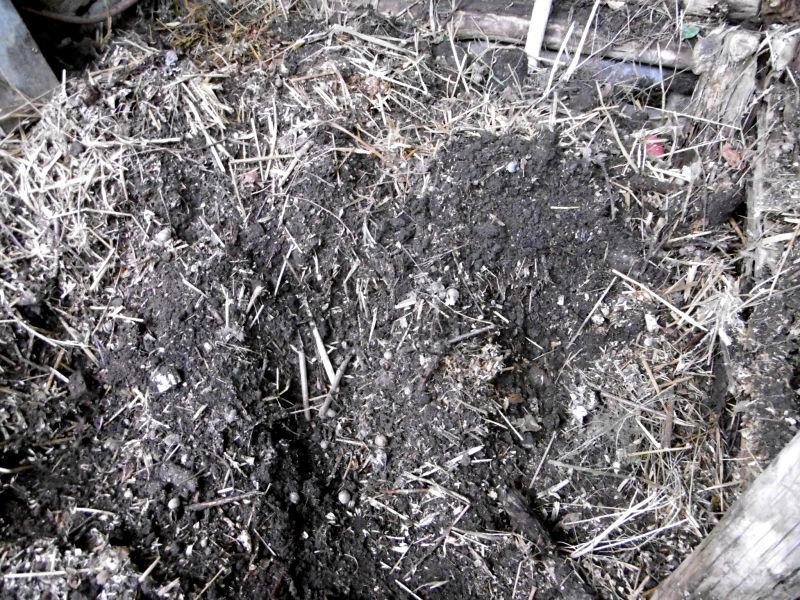 komposterde-aufbereitet-1