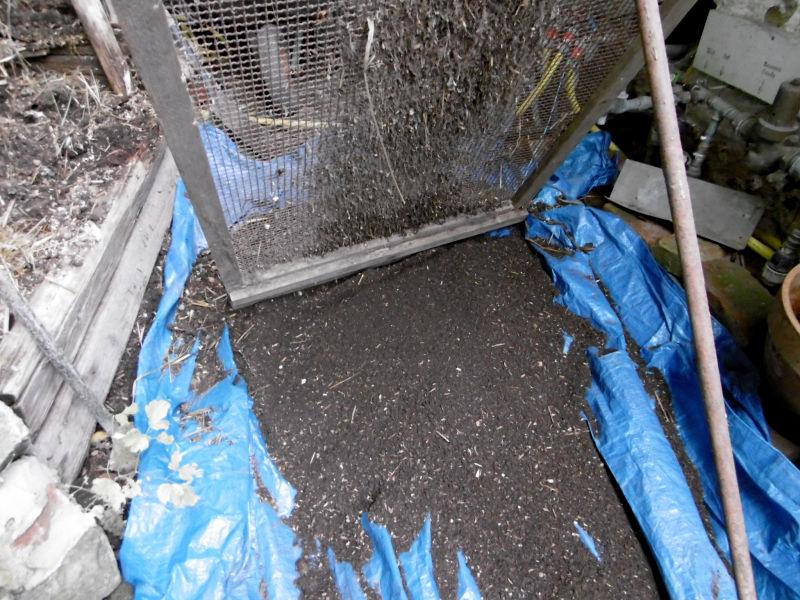 komposterde-aufbereitet-3