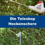Teleskop Heckenschere