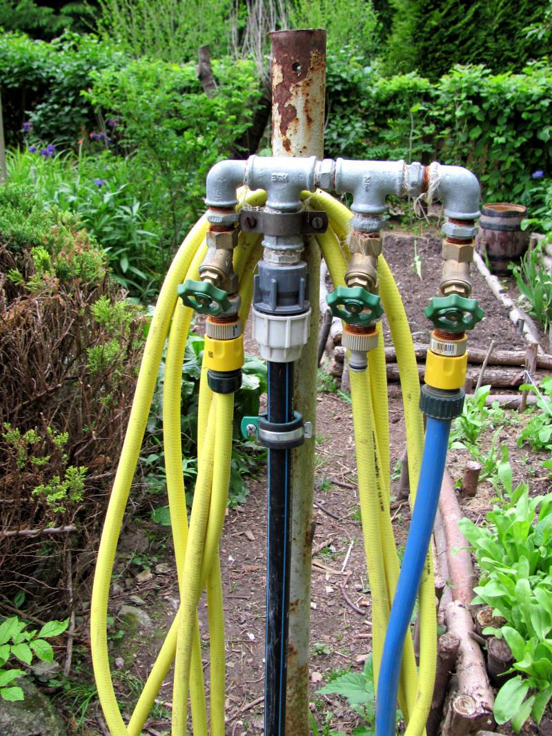Bewässerung im Garten