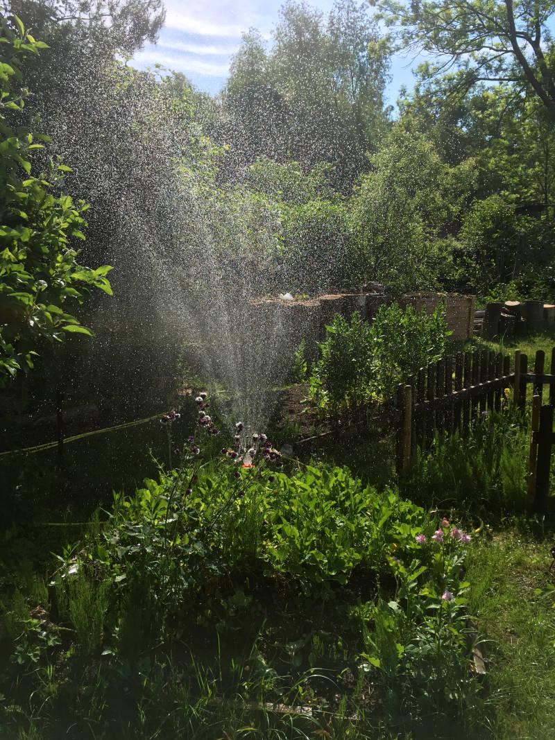 Bewässerungssystem Garten