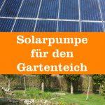 Solarpumpe Gartenteich