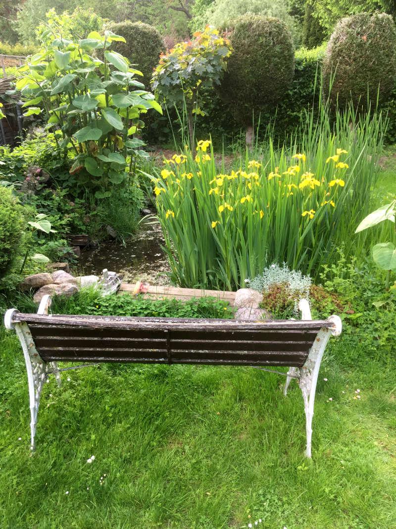 Gartenteich im Frühling