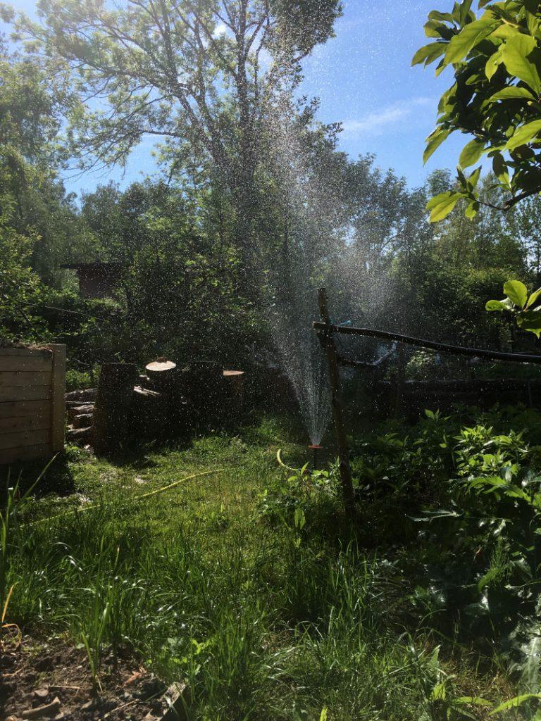 Rasen Blumen Bewässerung