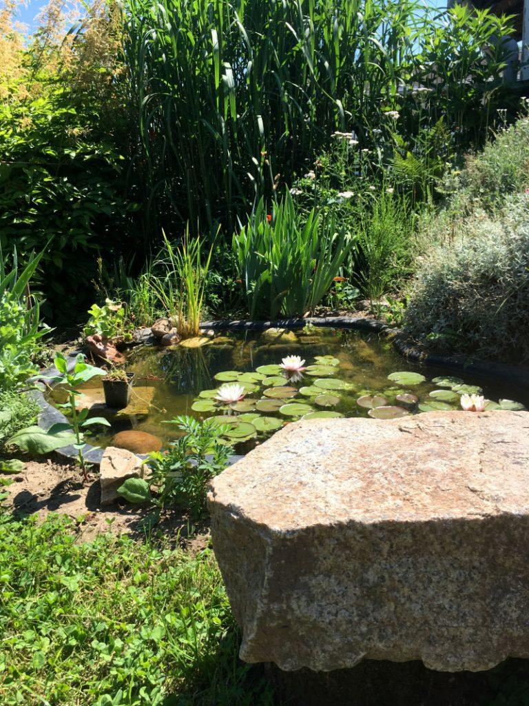 Sitzmöglichkeit am Gartenteich