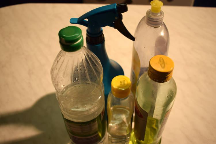 Hausmittel zur Schädlingsbekämpfung