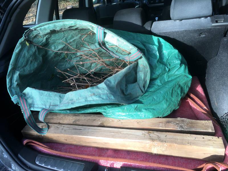 Grünschnitt transportieren im Auto