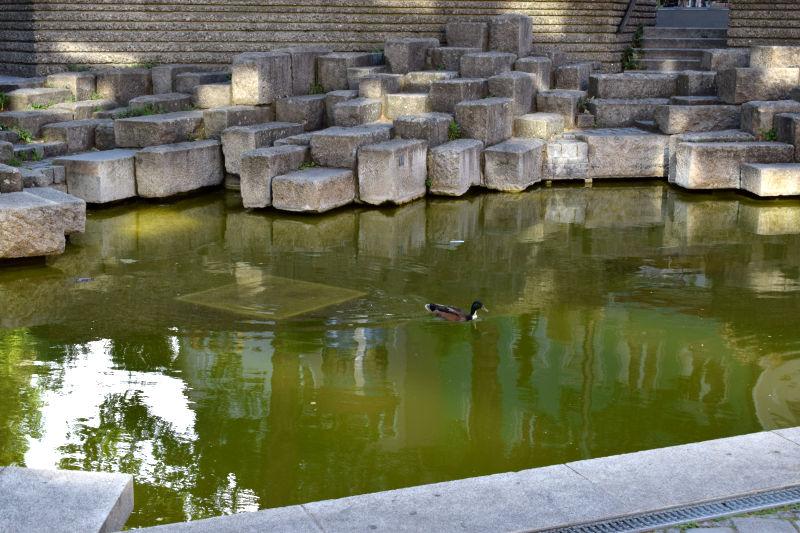 Steine und Treppenstufen im Teich